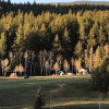 Rustic Creek Ranch #4 Backwoods