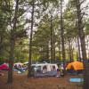 Shakori Hills Tent Camping