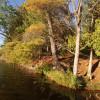 Raven's Point 3, Tryfan Forest