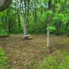 The Oaks at Oakwood Farm