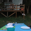 Orchard Cabin @ Jug Handle Farm