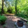 Hollyhock Farm Forest Retreat #1