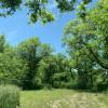 Perdue Homestead Farm Site 2