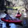 Doyles Creek Camp