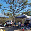 Quail Campsite Deep in the Bush