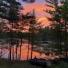 Pine Solitude!