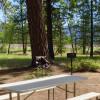 Private Plumas Forest Farm Retreat