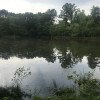 Scotland Pond