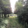 White Wolf Acres Ceder Grove