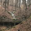 White pine waterfall.