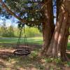 Hawthorne Loop Site #1