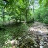 Fitchburg Furnace Creekside