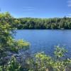 Lakeside Bunkie