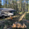 RV forest camping in the Rockies!