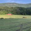 Mountain Horse Farm Retreat