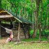The Forest Manger