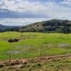 Maleny - Upper Plateau, Riverdell