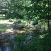 Kerr creek