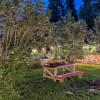 Green garden Oasis