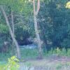 Cedar Creek RV Site