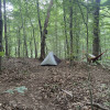 Wooded tent camps with lake access