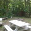 Finger Lakes Camping