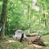Creekside Camping, Forest & Field
