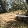 Private Riverfront Campsite #2