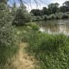 Private Riverfront Campsite #4
