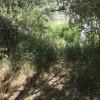 Private Riverfront Campsite #5