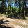 Santee/Vance/Palmetto Trail Camp