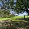 Dunagan's Meadow
