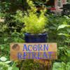 Acorn Retreat