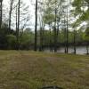 La Baraquette on Rose Lake