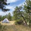 Pine Grove | Backpacking