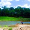 River Bone Ranch