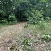 Camper site 1