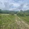 Camper site 2