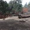 Yosemite Sierra Portal