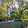 Wynola Country Cousin Silky Oak