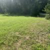 Balsam Meadow