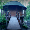 Round guesthouse in the woods