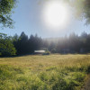 Klint-Brown camping