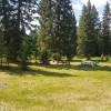 Bearberry Meadows