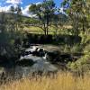 The Bullockies' Creekside Camp