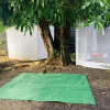 ❤️ of Haleiwa Tent Spot 3