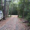 Daintree Wilderness Rainforest Camp