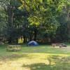 Apple Blossom Camp