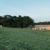 Free Range Farm Site