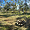 Farm Stay Creekside Camping